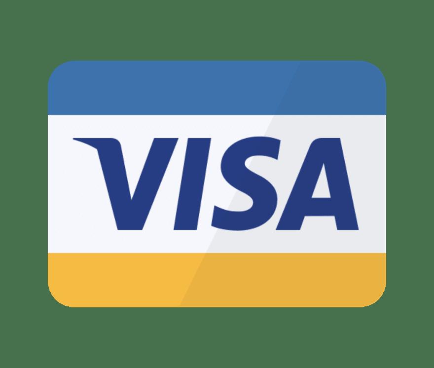 在线娱乐场 Visa