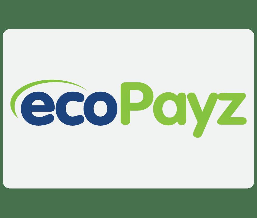 在线娱乐场 EcoPayz